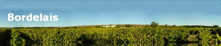 0000 Panorama Bordelais Vignoble